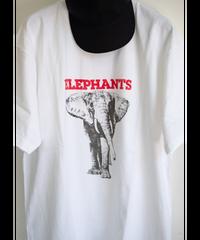 """ATSUSHINONAKAARTTEE / SOLOGUM """"ELEPHANTS"""""""