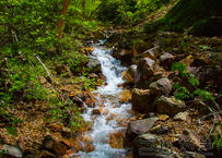 【写真】日差しがキラキラと躍る滝