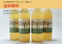(12本セット・送料無料)りんご屋まち子のアップルジュース 720ml