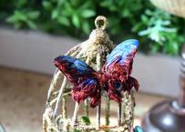 蝶のマグネット メネラウスモルフォ死線眼球 2Ssize