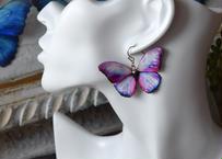 蝶のピアス メネラウスモルフォ raspberyl.col 2Ssize (両面、片耳用)
