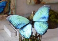 蝶のマグネット メネラウスモルフォ Emerald Lsize