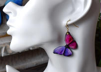 メネラウスモルフォのピアス lavender magenta half.col 3Ssize(片耳用)