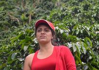 コロンビア アストリッド・メディナ ペレイラ 600g