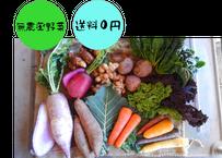 季節のお野菜 ふくセット