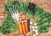 季節のお野菜 ふくわらいセット(8種類)