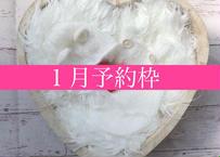 「予約購入」1月予定日・ホワイトハート2泊3日レンタルセット