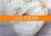 「予約購入」12月予定日・ホワイトハート2泊3日レンタルセット