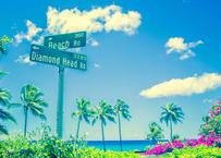 Beach Road  マット入(大)
