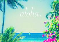 aloha dot  マット入(中)