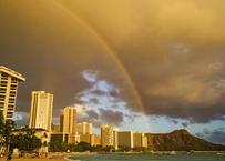 Waikiki & DH B  マット入(大)