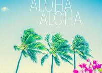 3 Alohas 3 Palm Trees  マット入(中)