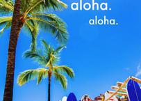 Aloha Surf Boards  マット入(小)