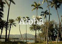 Aloha パームツリー マット入(小)B