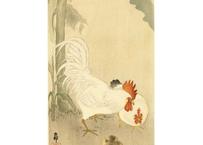 古邨 鶏と雛