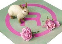 奥村 晃史「Rabbit and Rose」