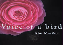 Voice of a bird