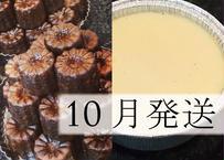 【10月発送】【早割】特別焼菓子セット