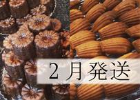 【2月発送】【早割】特別焼菓子セット
