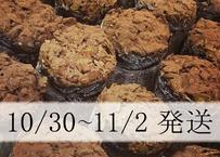 【10/30~11/2発送】特別焼菓子セット