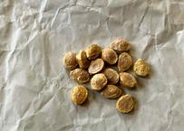伝統野菜 すくな(宿儺)かぼちゃの種 10粒