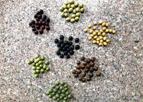7種から選べる枝豆、豆の種を30粒  送料無料