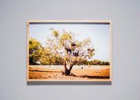 Framed photo by Tabi suru Suzuki No.004 - Essaouira, Morocco 旅する鈴木 写真作品