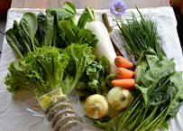 旬の野菜+手づくり農産加工品詰合せ月1定期便(3ヶ月コース)