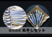 【鹿児島「丸干し」セット】栄養価たっぷり「いわし&きびなご」各2Set!
