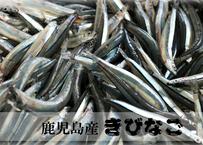 『天然きびなご』鹿児島産@食卓には欠かせない逸品を特盛(約1kg)空輸冷凍配送