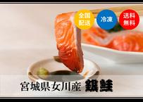 """【宮城県女川産銀鮭】銀鮭の王様""""銀王""""お得パック《SDJ02001》"""