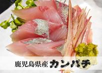 【鹿児島県産カンパチ】朝活〆後即配したお得2パックセット