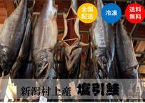 【新潟村上鮭】塩引鮭「製法に拘り有」噛む毎に味わい鮭《TKJ01002》