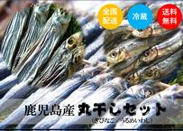 【鹿児島「丸干し」セット】栄養価たっぷり「いわし&きびなご」各2Set!《TKJ01005》