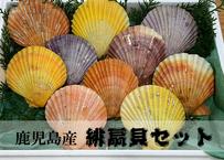 カラフルで美味しいヒオウギ貝セット