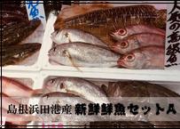 ≪コロナ影響≫【濃旨★鮮魚直送】島根随一漁港から朝獲盛り(約1~1.5kg)
