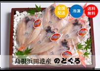 【浜田港最高級のどぐろ】メディアでも多数ご紹介された逸品♪干物だから出来る旨味と甘味♪ 5枚セット《IWJ01001》
