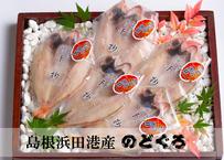 【浜田港最高級のどぐろ】メディアでも多数ご紹介された逸品♪干物だから出来る旨味と甘味♪ 5枚セット