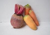 【表参道/Omotesando Pick Up】茨城県 シモタファームの根菜セット Root Vegetable set from Shimota Farm in Ibaraki prefecture
