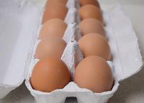 【駒沢/Komazawa Pick Up】宮城県 セオリファームの平飼い自然卵(ホシノブラック)10個 10 Hoshino Black eggs  from Seori Farm in Miyagi