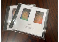 CAUSAL 2020 (音楽CD)
