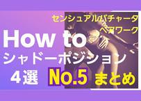 センシュアルバチャータペアワーク「HOW TO シャドーポジション」4選 セットNo.1~5
