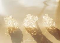 春分 「gilシリーズ~gilgwaloas閃光の花束1~」