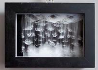 Eric PETR エリック・ぺートル写真 0x1011_re 木製 黒いヴィンテージ額