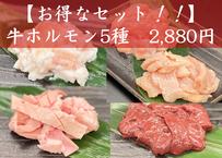 【お得なセット!!】牛ホルモン5種 500g