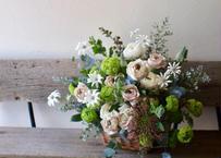 Bouquet  / Arrangement    XL type