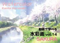 【動画講座】Vol.14 春崎幹太 桜