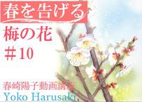 春崎陽子動画講座 春を告げる梅の花 #10