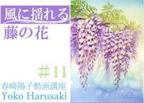 『春崎陽子動画講座#11』風に揺れる藤の花