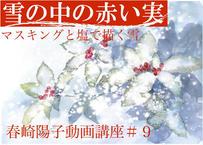 『 春崎陽子動画講座 #9』  雪の中の赤い実